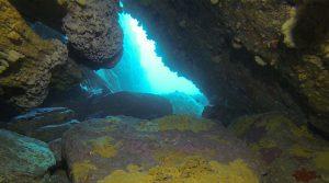 Apartments - Boat Dive Site - Double Boat Dive - Apartments - Apartments - Double Boat Dive